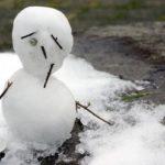 冬支度の開始と紅葉リポート&1月のブックスドリーム